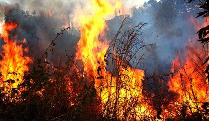 Maranhão é o segundo estado em foco de queimadas este mês