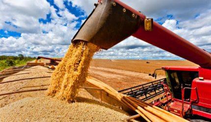 Produção de grãos recua no Maranhão, mas soja e milho crescem