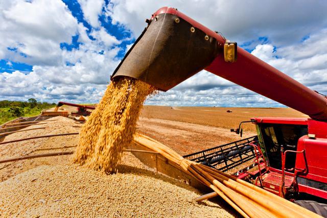 Resultado de imagem para safra grãos