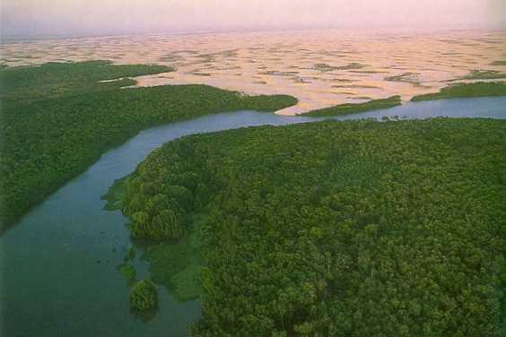Image result for Zoneamento Ambiental chega aos municípios