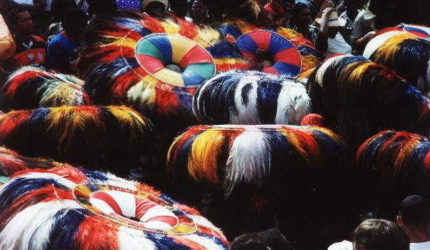 A origem e evolução das histórias do Bumba-meu-boi