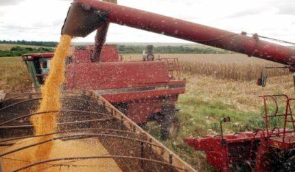 4,8 milhões de toneladas de grãos deverão ser colhidos em 2018