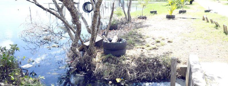 Lagoa da Jansen ainda tem 18 pontos de poluição