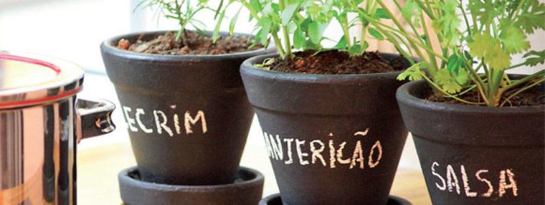 Saiba como ter a sua própria horta em casa