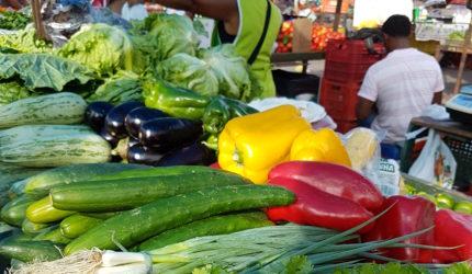 Escolha bem frutas, legumes e verduras