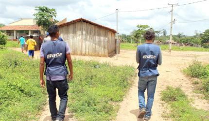 Censo Agropecuário mostra nova realidade no Maranhão