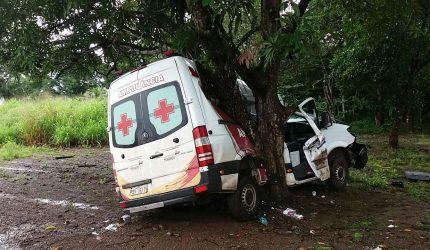 Ambulância colide em árvore na BR 135