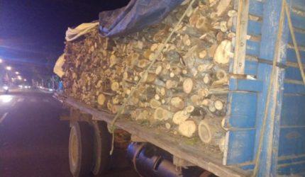 Polícia Rodoviária apreende caminhão carregado de lenha