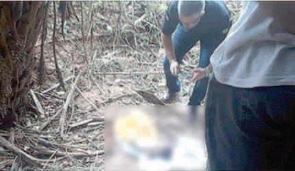 Mãe do bebê encontrado em saco é identificada