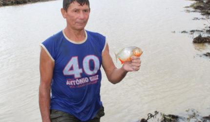 Mais de 2,5 toneladas de peixe nativo são distribuídas a famílias da Baixada