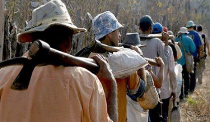 Caravana da Liberdade quer fortalecer o combate ao trabalho escravo