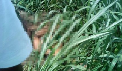 Mulher é encontrada morta com sinais de violência no Anjo da Guarda