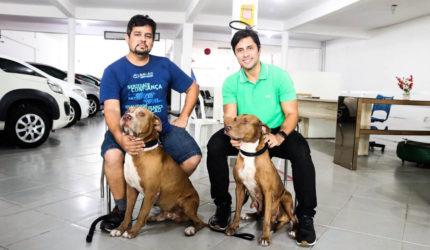 Deputado estadual visita cães supostamente abandonados na Cohab