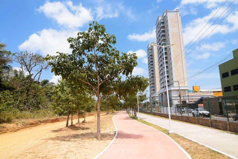 Dia da Árvore no Parque Rangedor