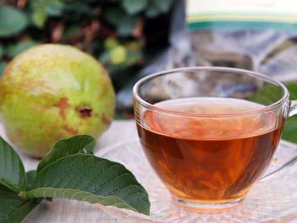 4 benefícios do chá da folha de goiabeira para o corpo | O Imparcial