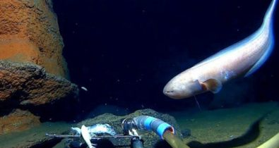 Conheça os pontos mais profundos do oceano