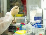Hemorio estuda tratamento de covid-19 com plasma de vacinados