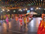 Boi Mimoso da APAE faz apresentação especial nesta quarta-feira
