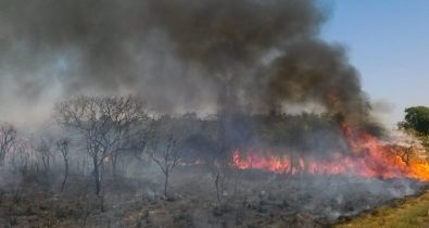 Decreto proíbe queima controlada por 120 dias