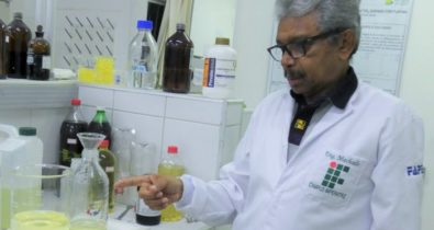 Pesquisa produz biodisel usando coco babaçu