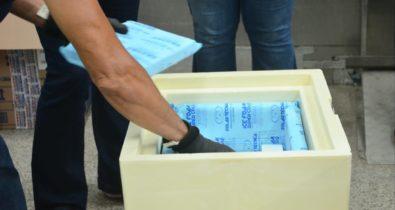 Maranhão recebe novas doses de vacinas Pfizer nesta quinta-feira