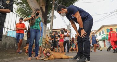 Cerca de 2 mil pets são atendidos pelo Mais Saúde Animal
