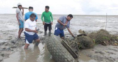 Destroços de avião da Segunda Guerra Mundial são encontrados no Maranhão