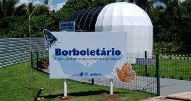 Parque do Rangedor ganha espaço com Borboletário