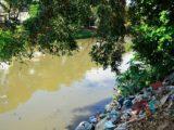 Dia Mundial da Limpeza tenta recuperar rios