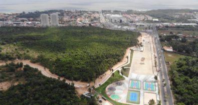 A importância do verde na cidade