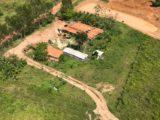 Polícia Federal erradica 85 mil pés de maconha no interior do Maranhão