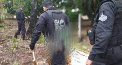 Polícia apreende 5 kg de explosivos em chácara em Imperatriz
