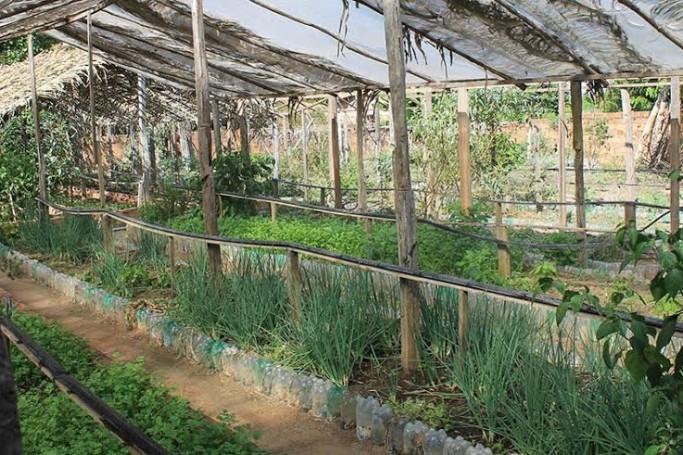 Mobilização em torno da agricultura familiar na Baixada