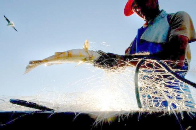 Pescadores voltam a receber benefício do seguro-defeso